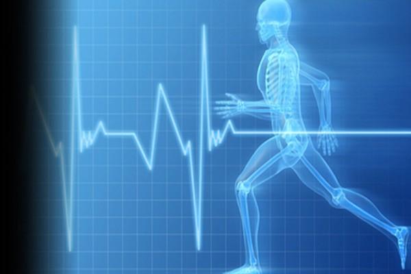 دانلود پاورپوینت فیزیولوژی قلب و دستگاه گردش خون