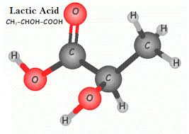 دانلود تحقیق اسید لاکتیک